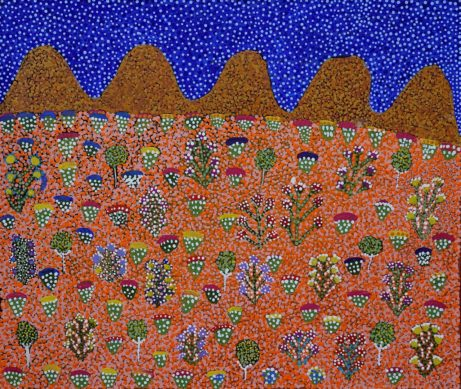 Bush Medicine Plants by Desma Ngwarraye Turner