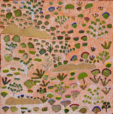 Bush Medicine Plants by Josie Ngwarraye Ross